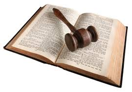 Pursing A Legal Career